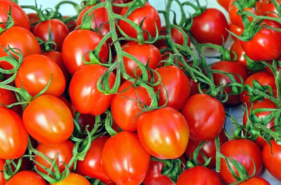 tomates-monodiète-comment-faire